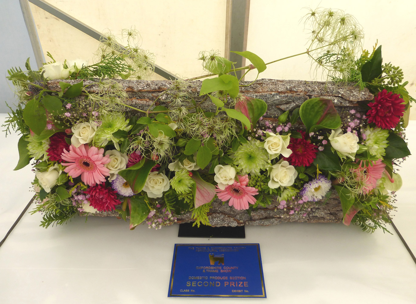 2. Jean Barker - Nature's Tapestry (Thame Show 2014)